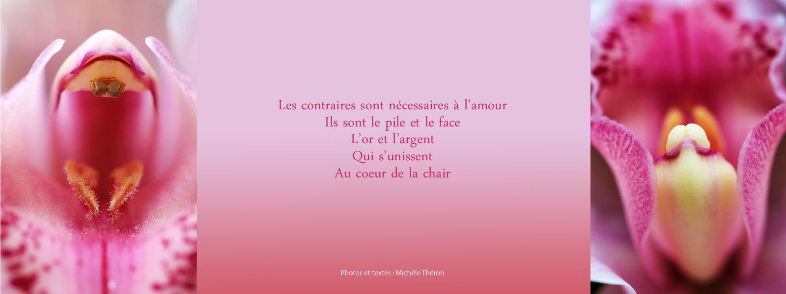 Michèle-Théron_aout2016