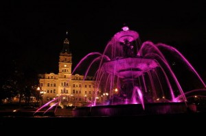 fontaine tourny et parlement rose