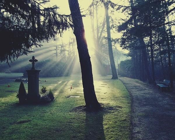cemetery-883417_640